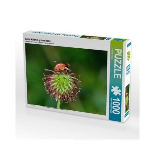 Marienkäfer in grüner Natur Foto-Puzzle Bild von Claudia Evans Puzzle
