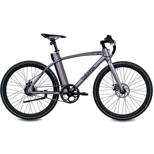 Chrisson E-Bike eOctant Kettenantrieb, 1 Gang, Heckmotor 250 W grau E-Bikes Fahrräder Zubehör