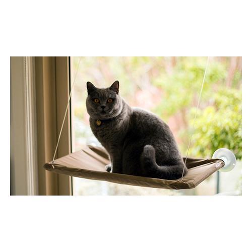 Fenster-Liege mit Saugnäpfen für Katzen: 1