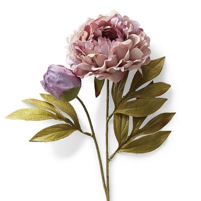 Full Blossom Lavender Peony Stem...