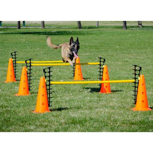 FitPAWS Hundesport-Set