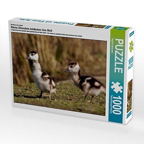 Kleine Gänschen entdecken ihre Welt Foto-Puzzle Bild von Sigrid Enkemeier Puzzle