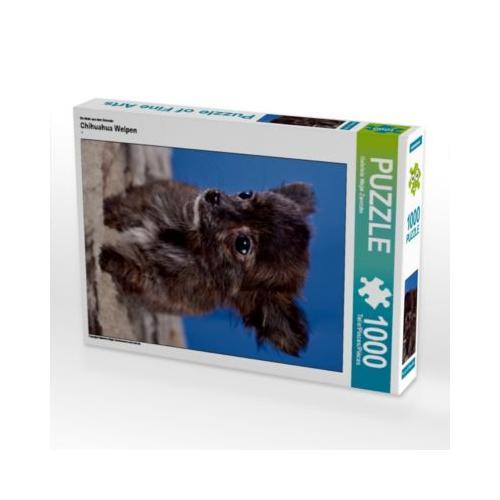 Chihuahua Welpen Foto-Puzzle Bild von weh-zet Puzzle