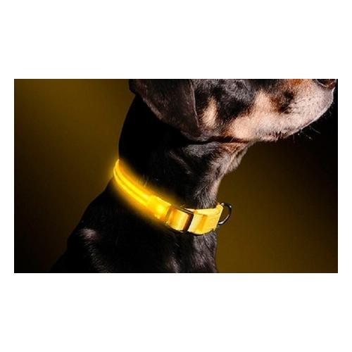 LED-Halsband für Hunde: L