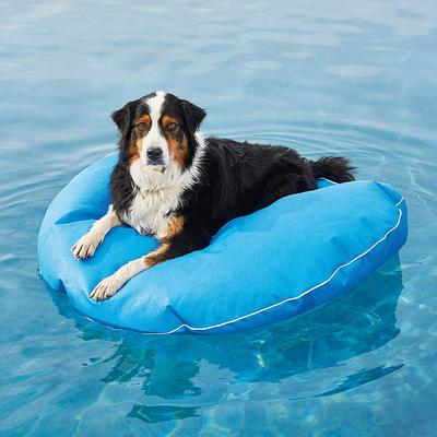 Dog Pool Float and Lounger - Lime, Medium: 39 dia. - Frontgate