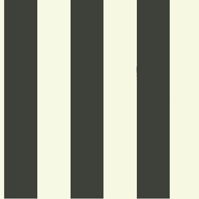 Canopy Stripe Wallpaper Double Roll Black/White - Ballard Designs