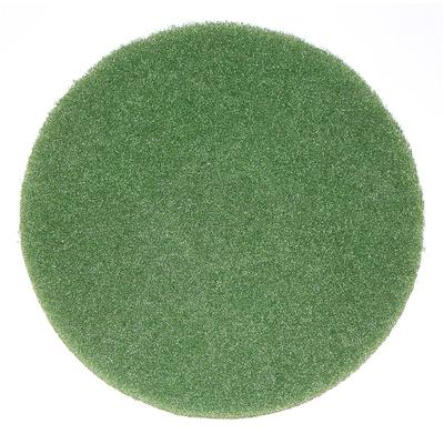 """Bissell 437.056 12"""" Cleaning Pad for BGEM9000, Green"""