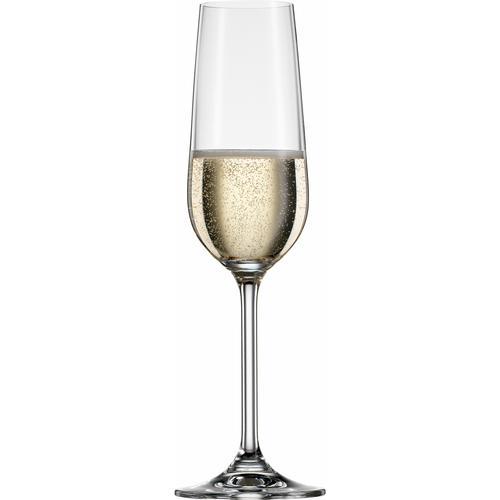 BOHEMIA SELECTION Sektglas CLARA, (Set, 6 tlg.) farblos Kristallgläser Gläser Glaswaren Haushaltswaren